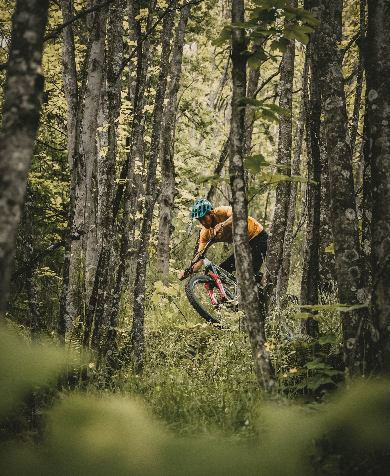 Goodyear athlete Conor Macfarlane riding in forest